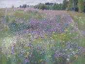 Полевые цветы, 2006, 40х50, картон, масло